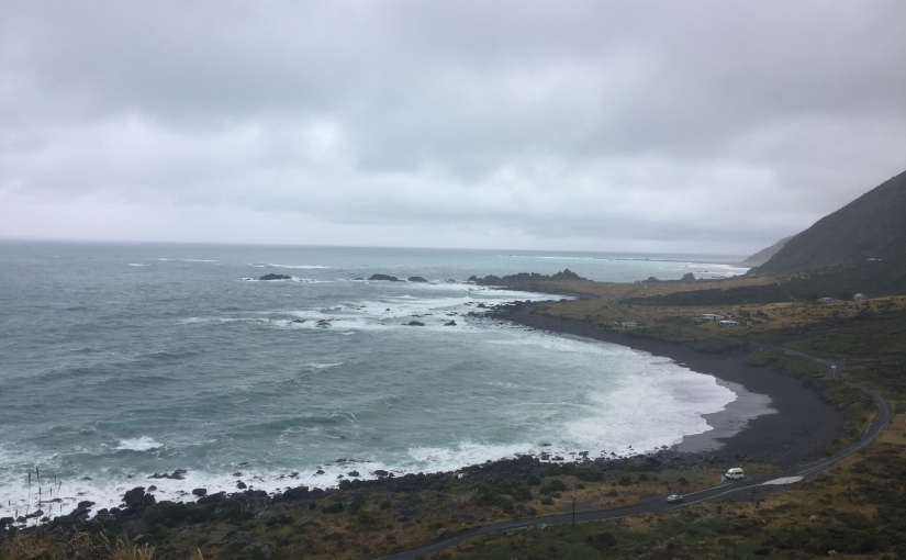 Paradise for surfers and seals: Cape Palliser, New Zealand