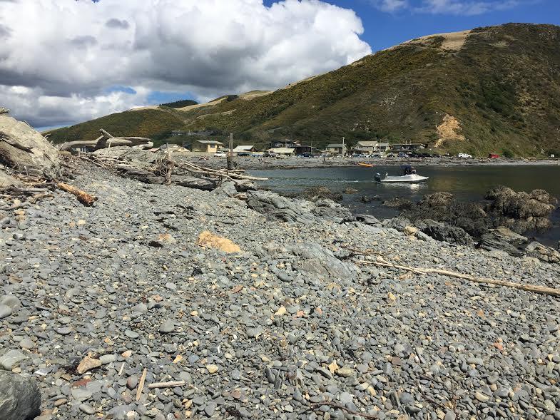 opposite beach view