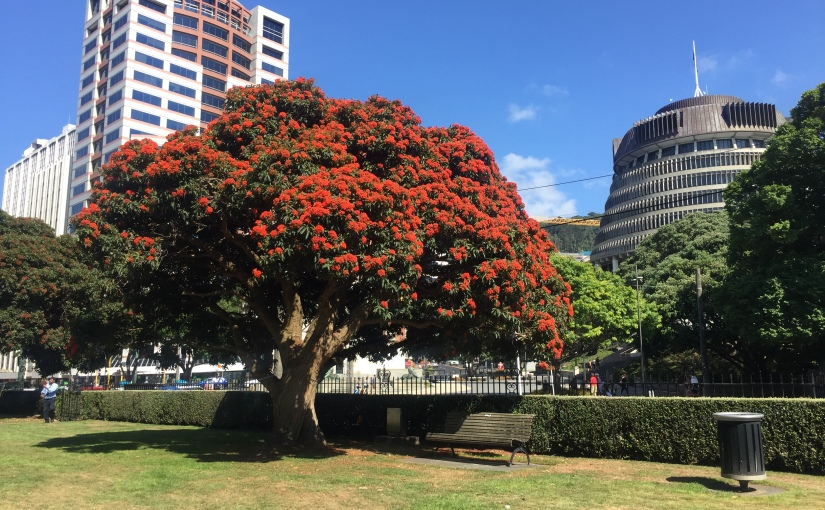 12 Things to love about Wellington, New Zealand
