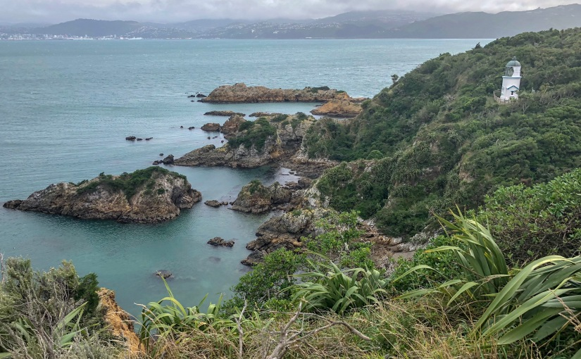 Matiu/Somes Island, Wellington, New Zealand
